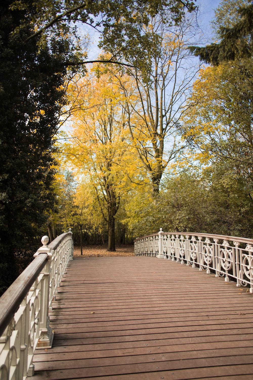 wooden bridge near trees