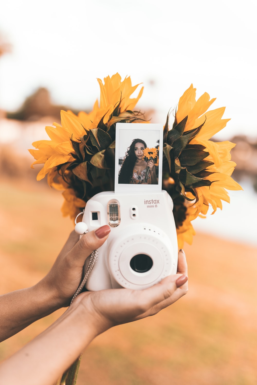 camera and sunflowers