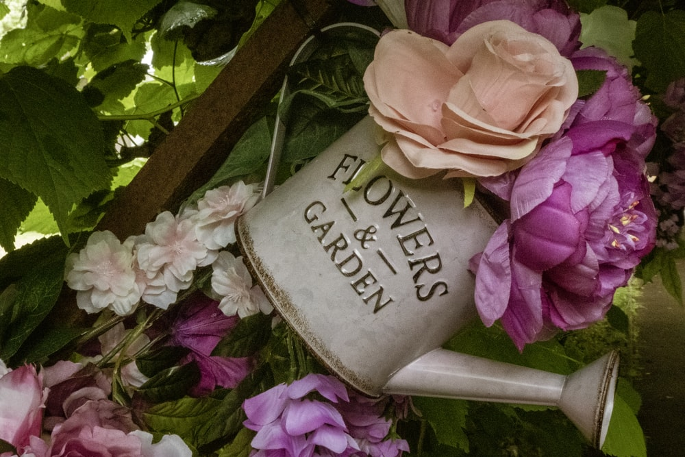 pink and orange flowers on grey watering can