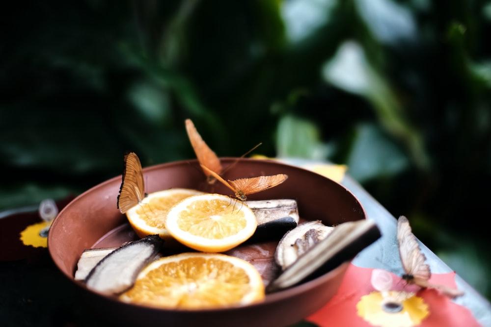 sliced lemon on bowl