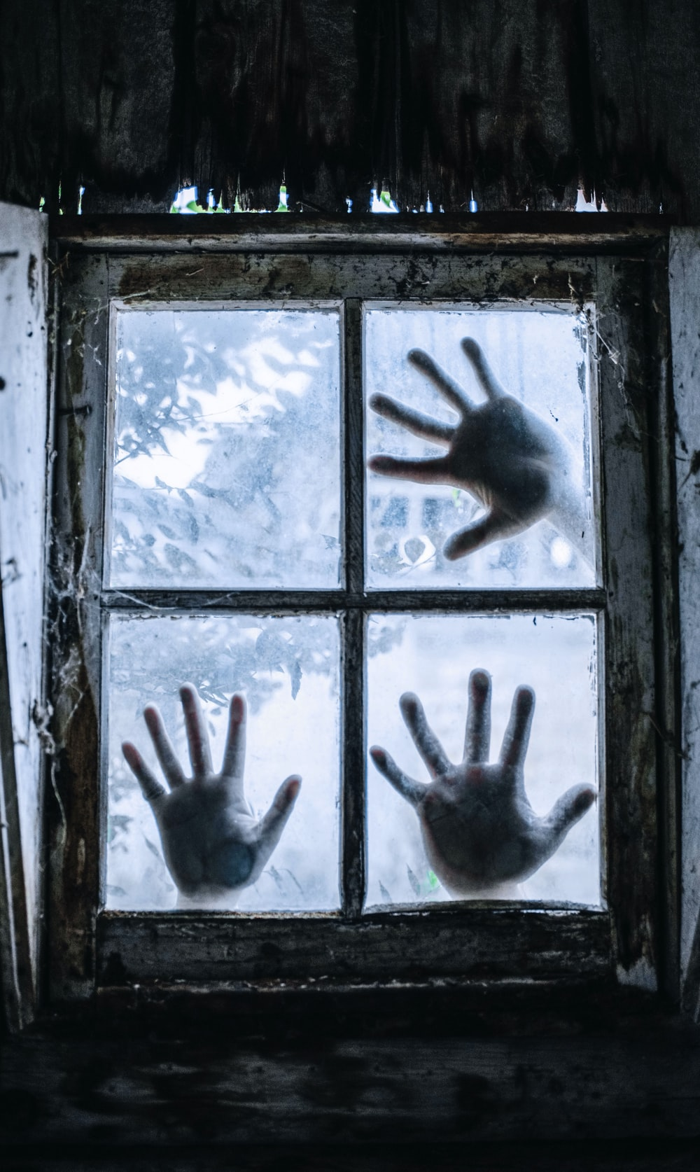 glass window with three human palms