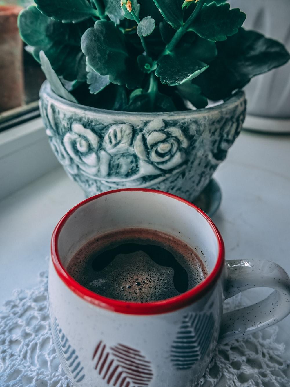 beverage filled mug beside plant in pot