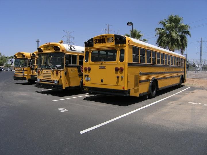 Koulubusseja parkissa