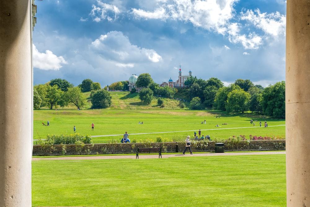 people on green grass field