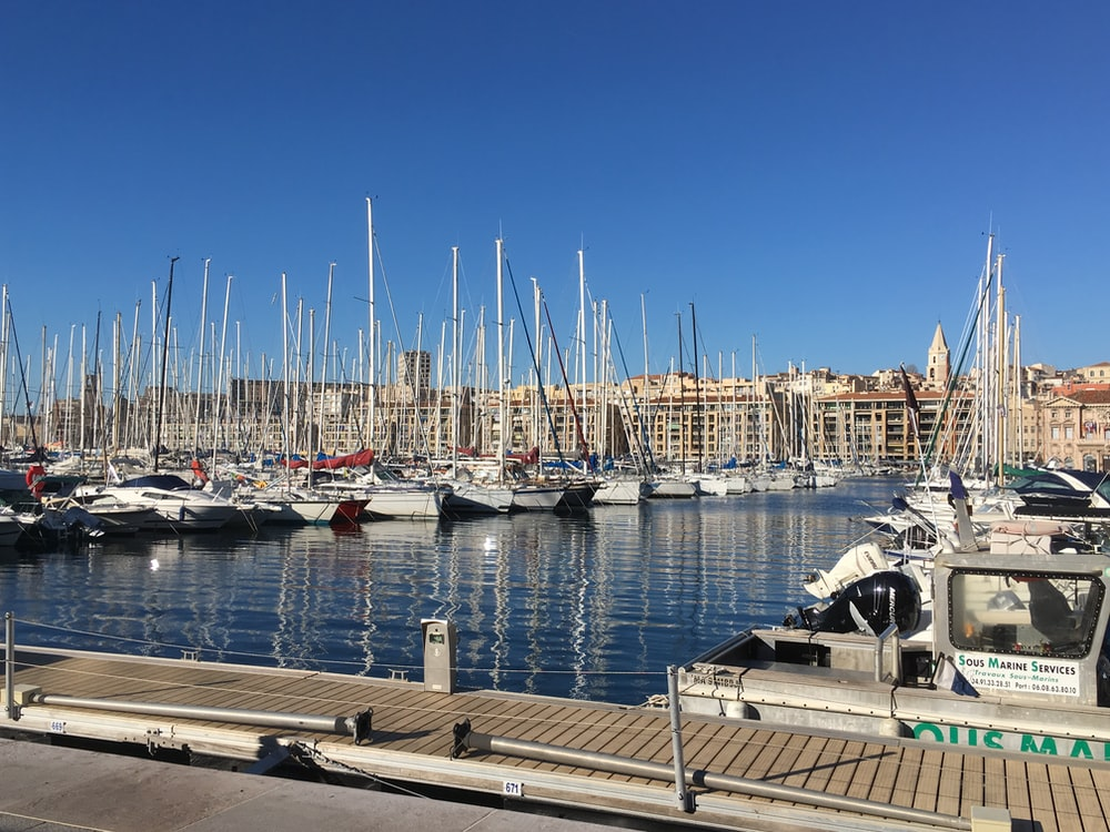 marina with yachts during daytime
