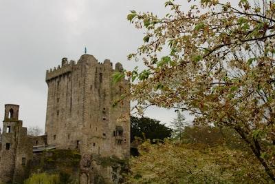 bricked building blarney stone teams background
