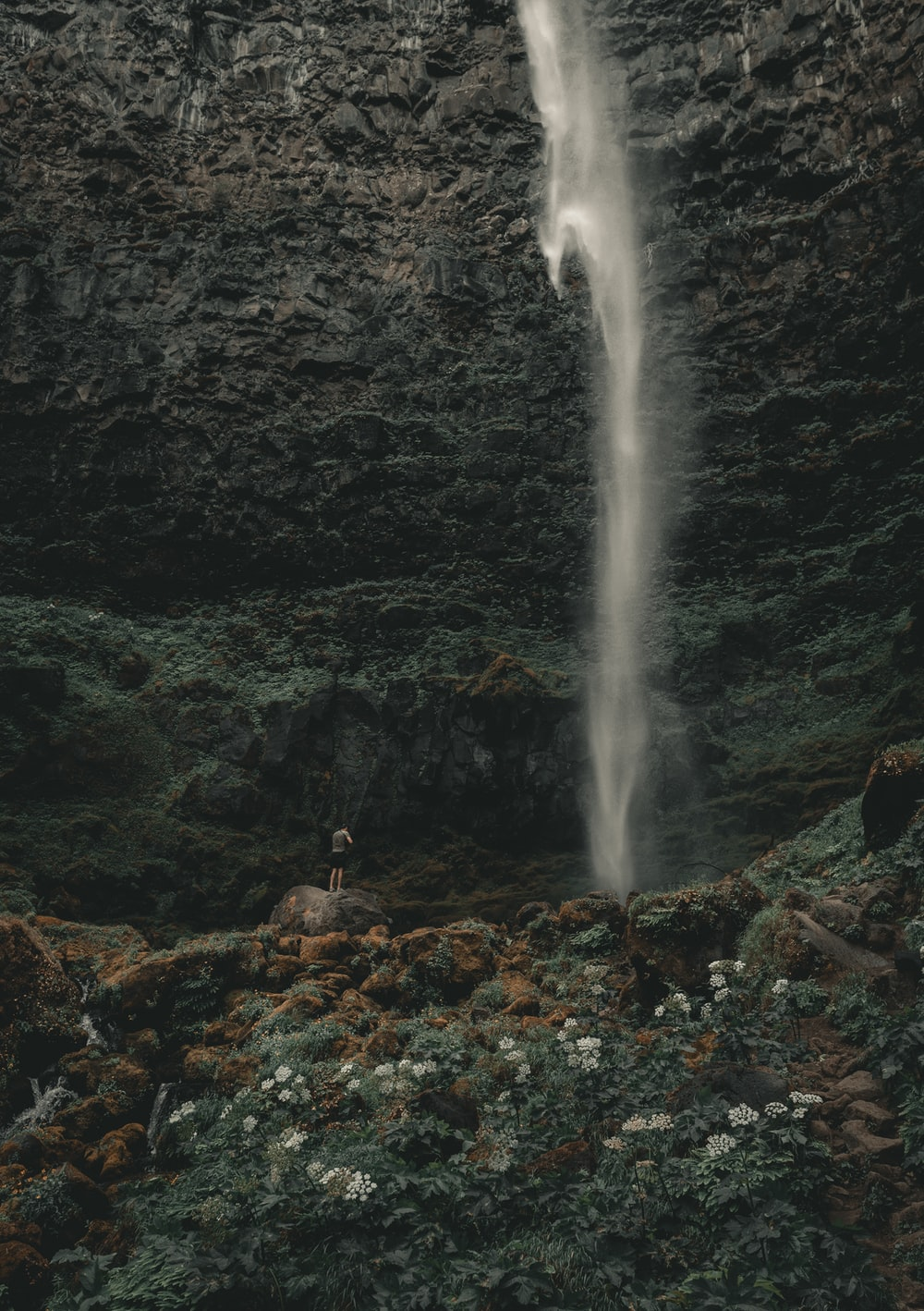 person standing near waterfall