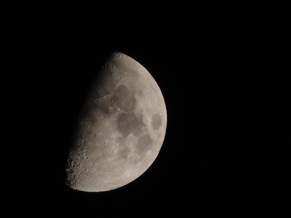 grey half-moon close-up photography