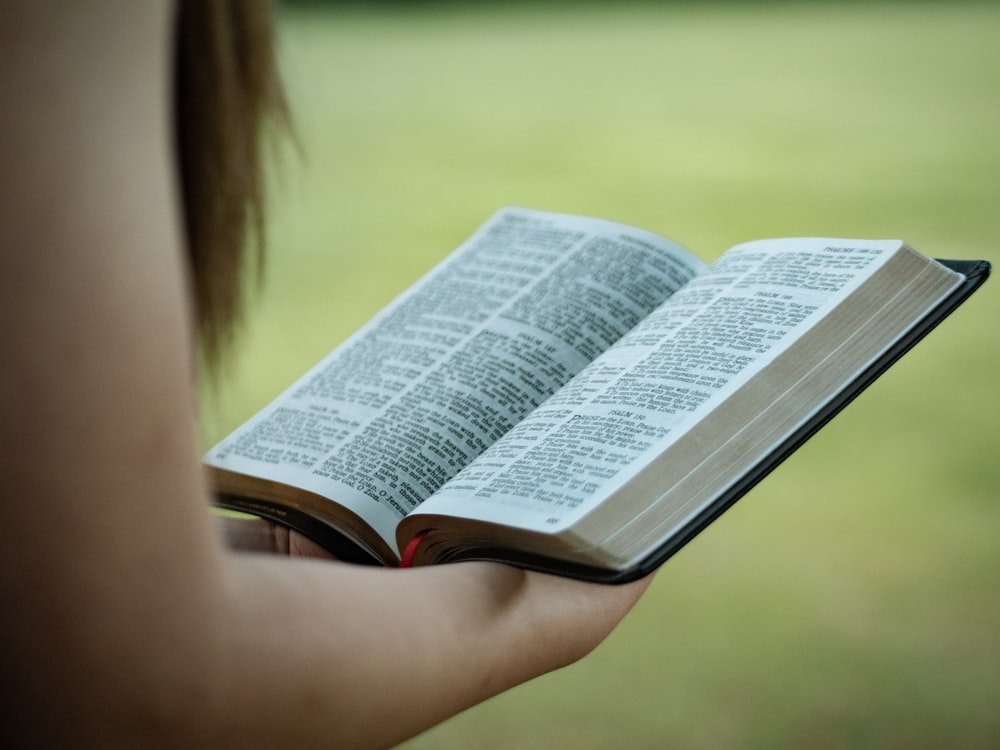 person holding Holy Bible