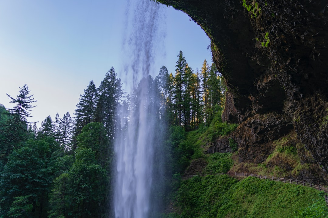 """One last photo of Oregon's beautiful South Silver Creek Falls. This is part of """"The Trail of 10 Falls"""" and this is the biggest of those waterfalls. The path cuts under the huge cliff that's covered in moss, ferns and wild flowers. I wanted to capture how impressive this place really is by getting in the waterfall, the huge cliff, all the beautiful green, the 200-foot-tall old-growth pine trees, and the amazing trail they built. Nature, you so fine."""