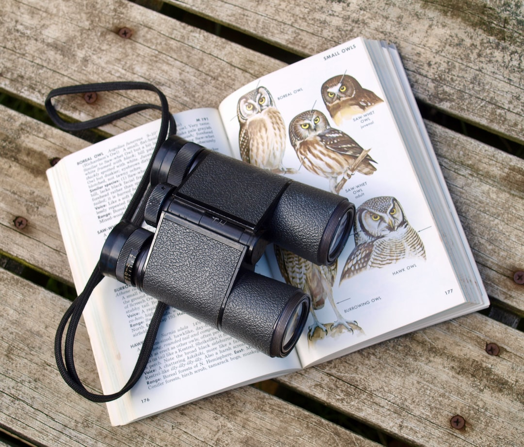 Binoculars rest on a bird identification book open to a page on owls.