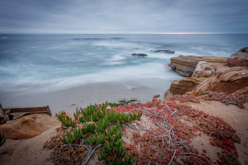 beach cliff viewing calm sea
