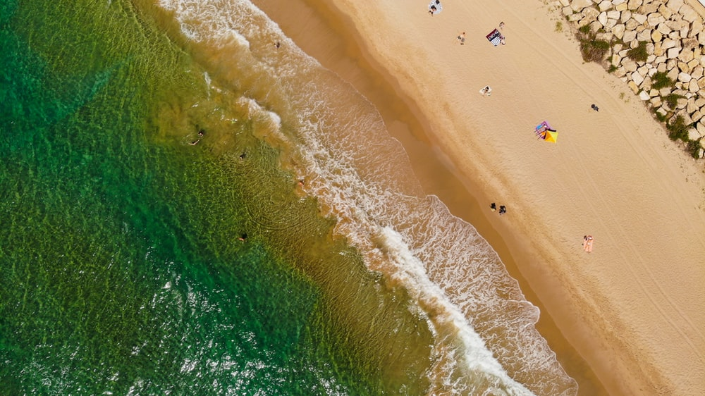 aerial photography of shore with people at daytime