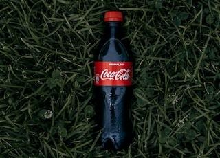 Coca-Cola soda bottle on grass