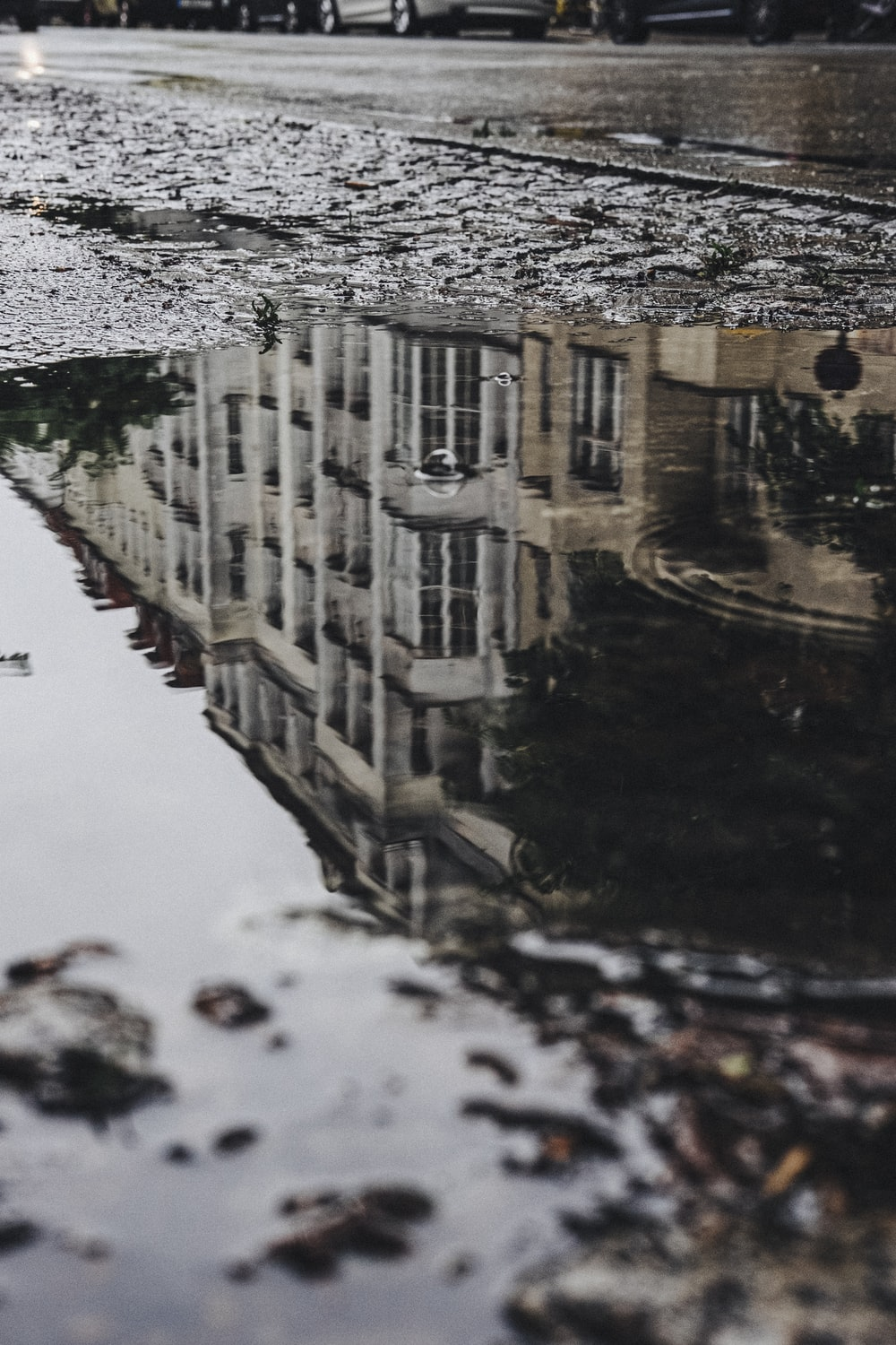 close-up photography of water puddle