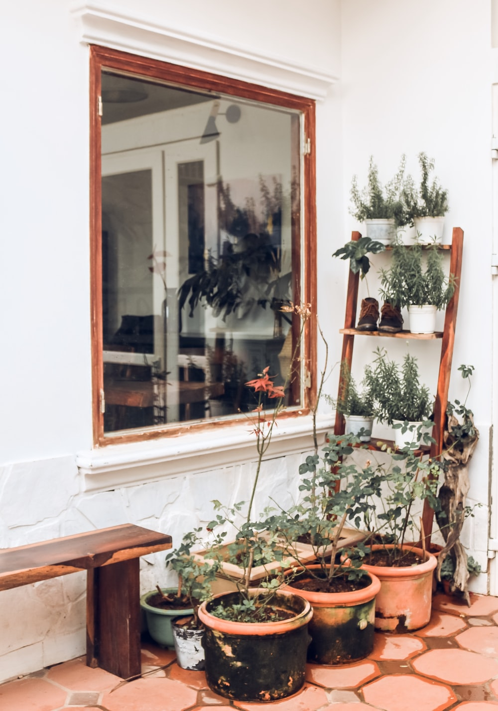six flower pots in front of brown wooden framed clear glass window
