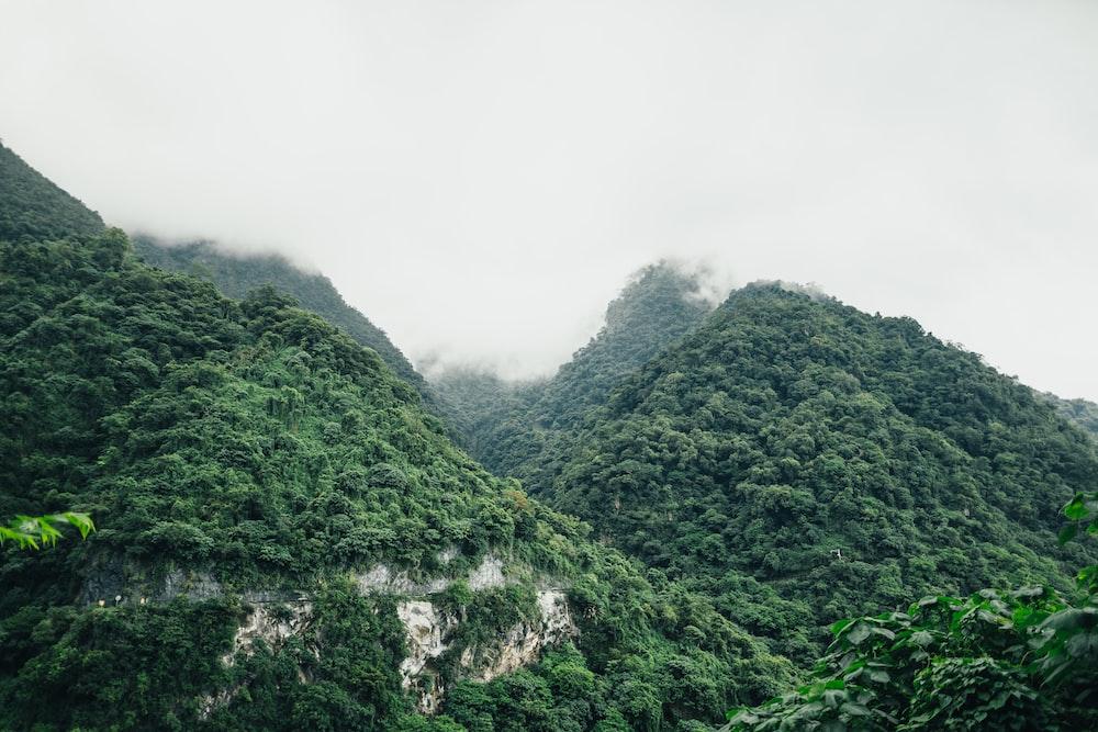 low lying white cloud covering mountain peak