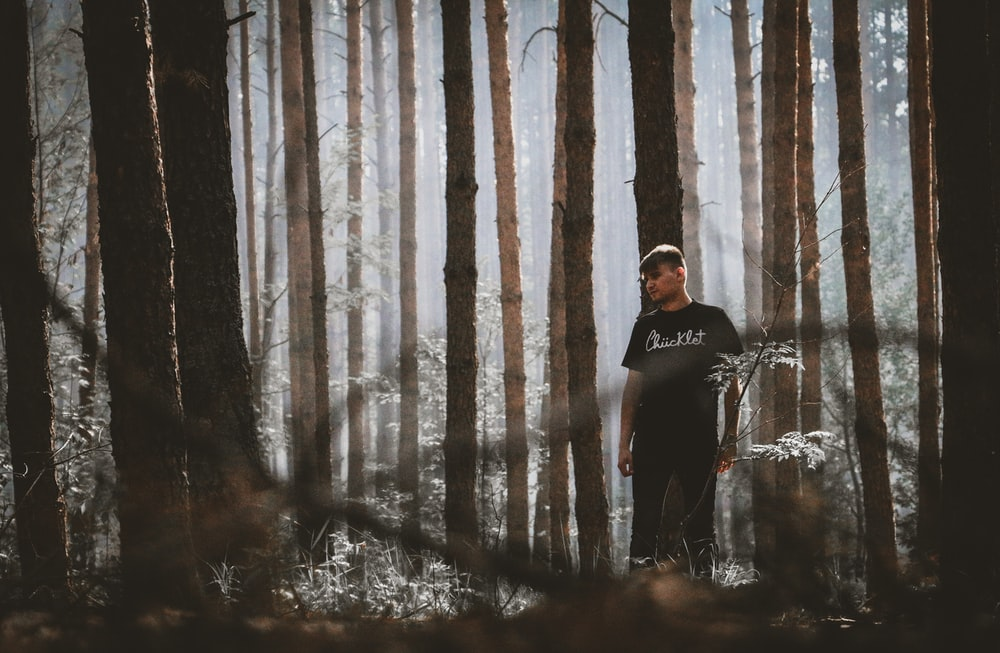 man standing on forest during daytime