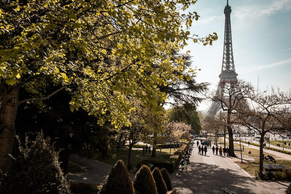 Eiffel tower on focus photography