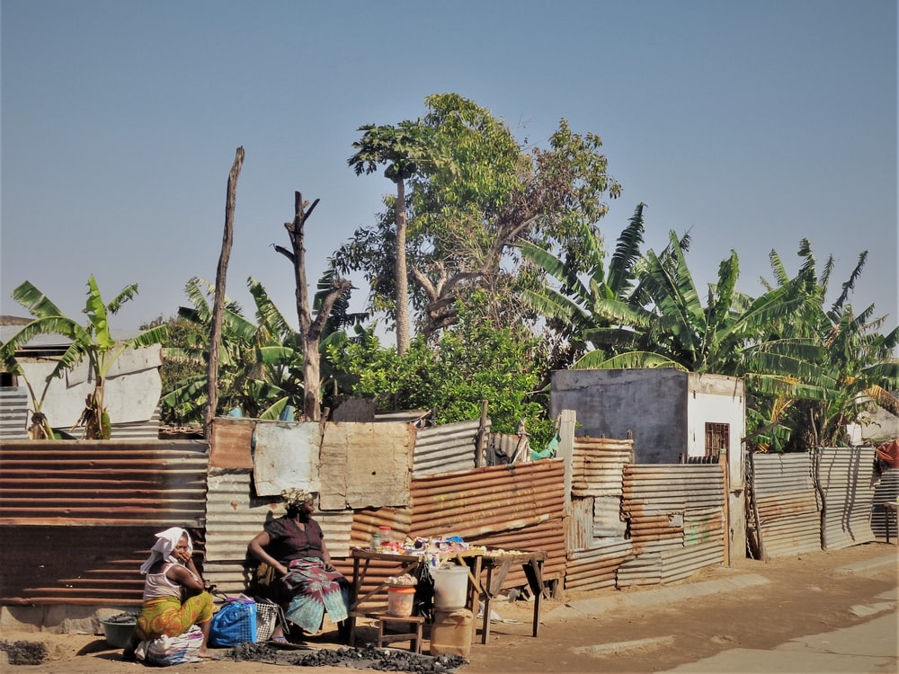 two person selling good near a tree during daytime