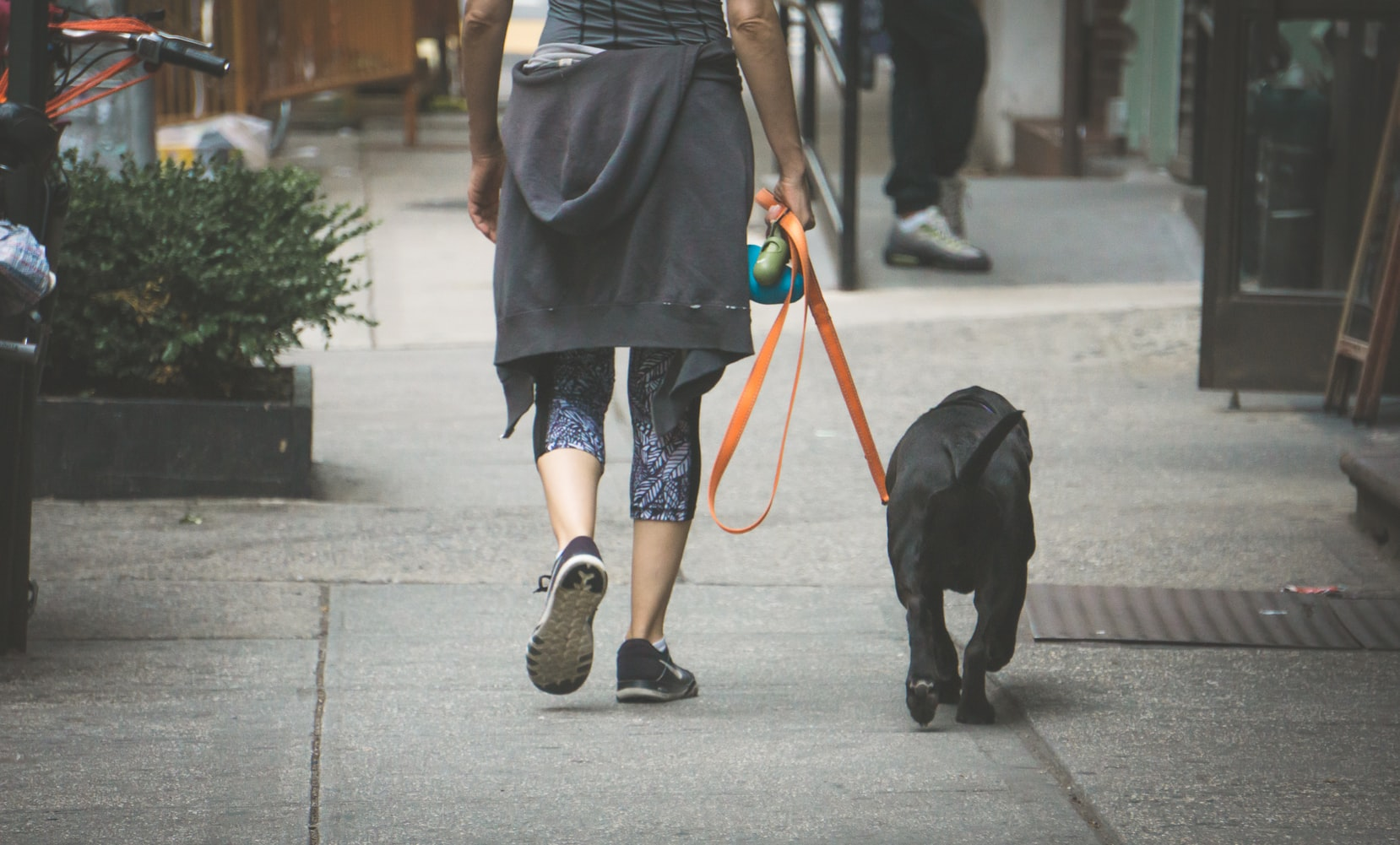 A woman in leggings takes her dog for a walk. Letting your dog sniff to their heart's galore is a great way to get canine enrichment in your regular routine.