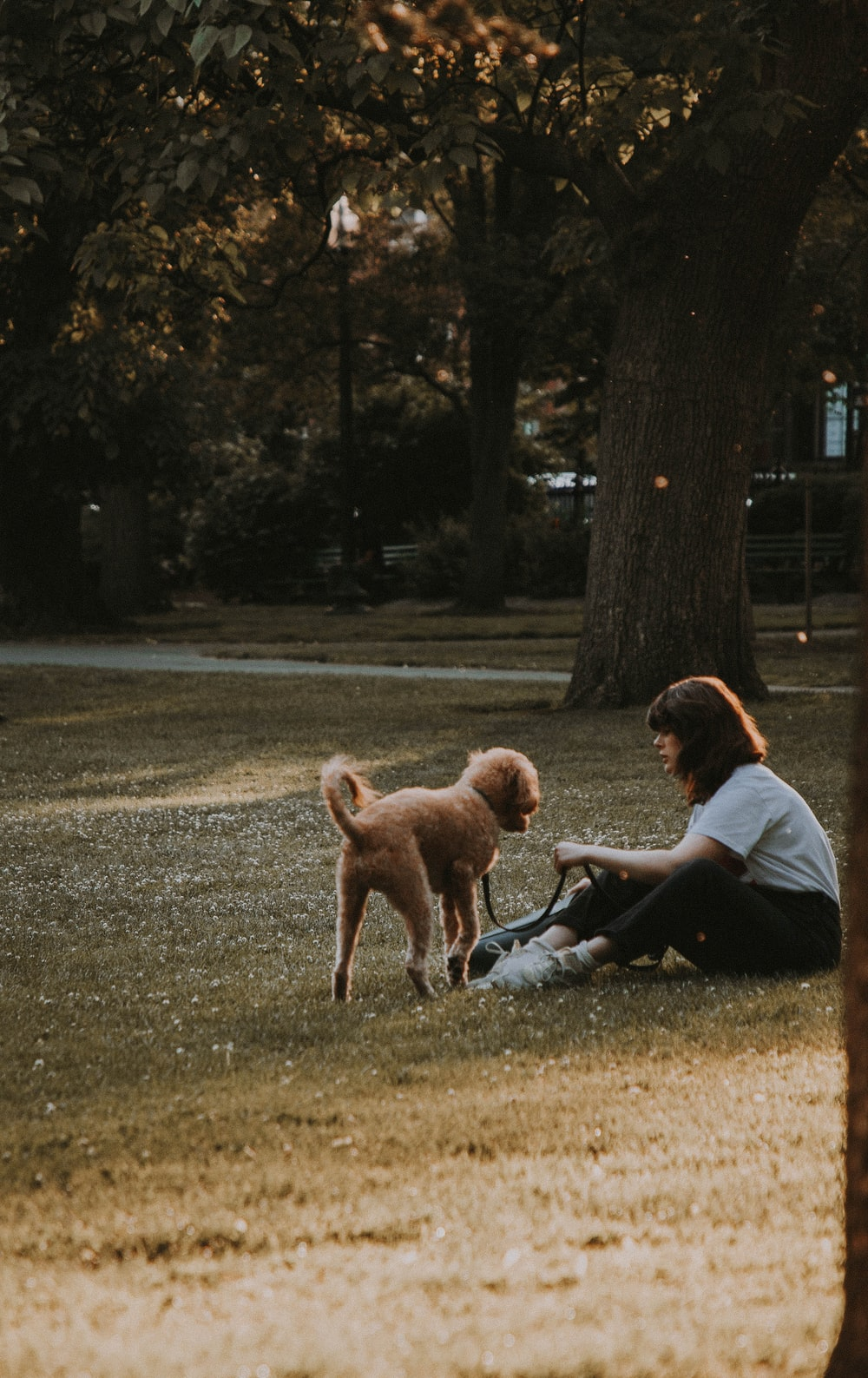 woman sitting on ground beside dog