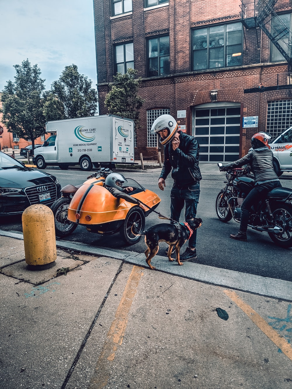 man standing beside dog on road