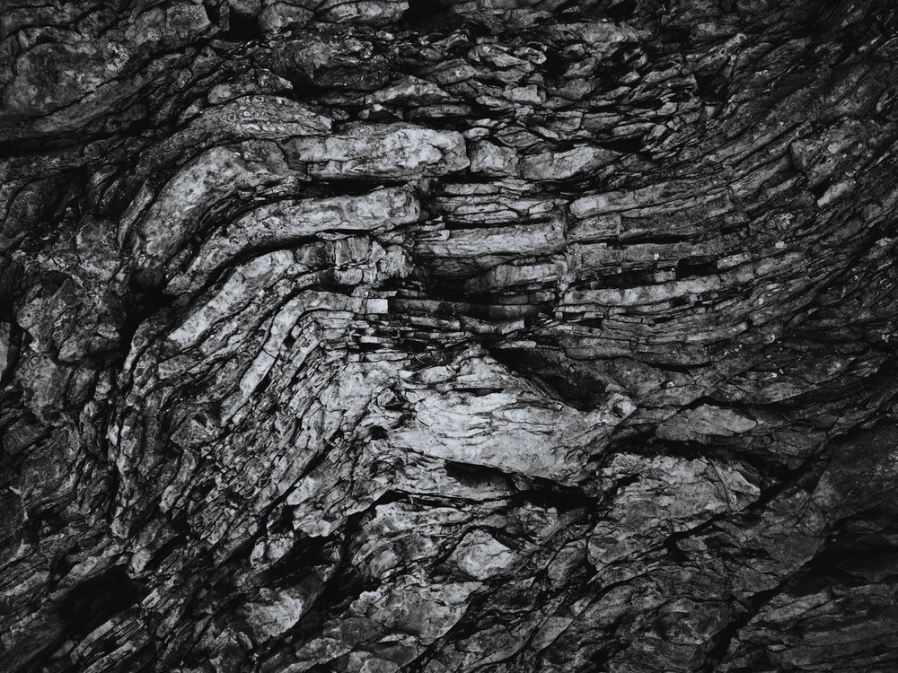 grayscale photography of plank