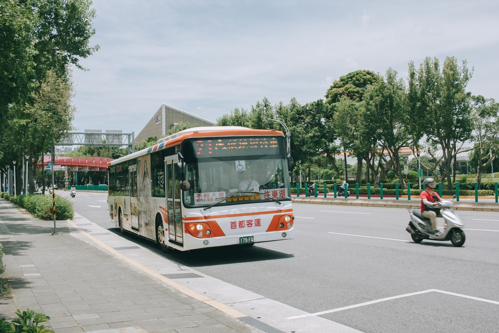 man riding motor scooter near white and orange bus on road viewing trees