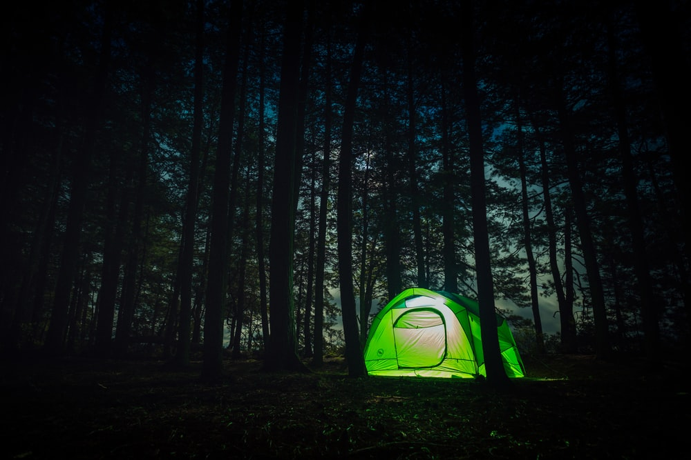 green dome tent at night in forest