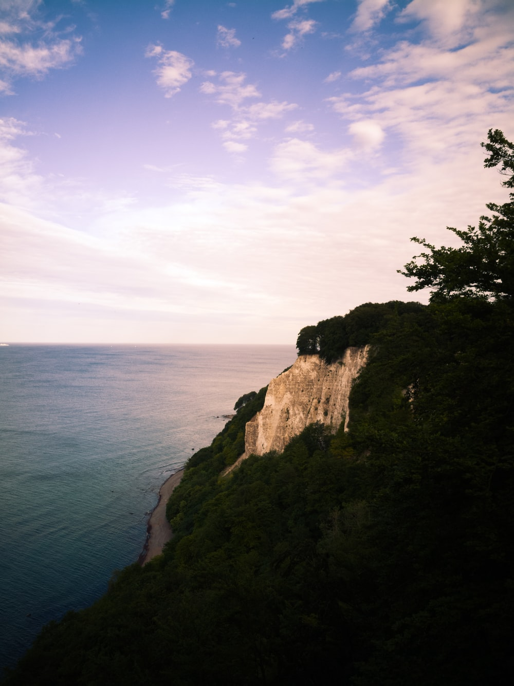 sea cliff during daytime