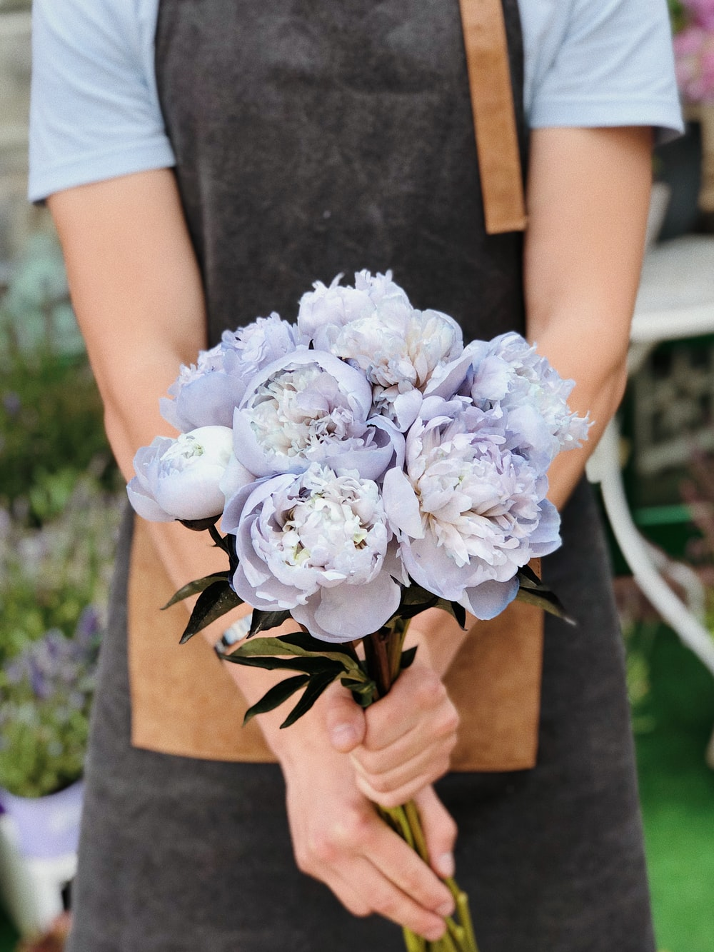 person holding blue flower
