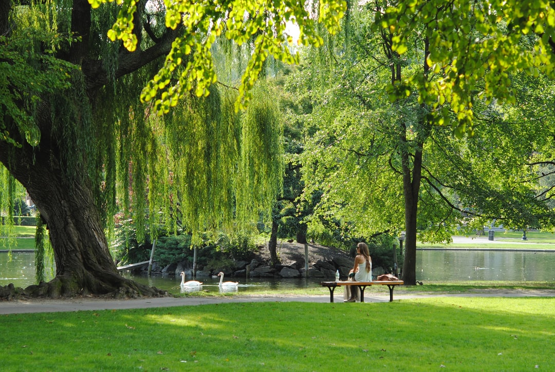 The UK and Europe have great inner city parks to relax in by Josephine Baran.