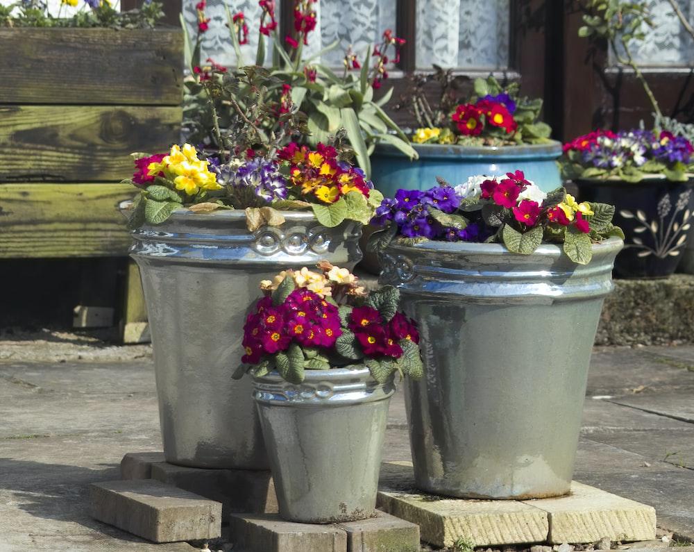 flowers lot