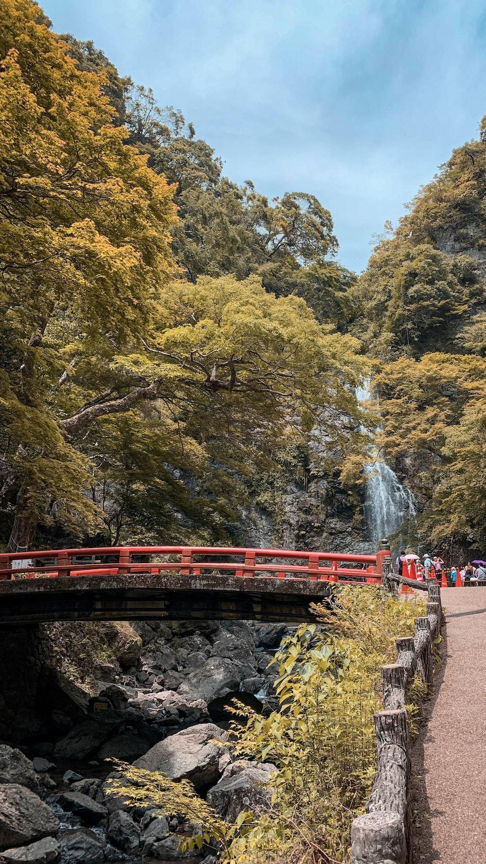 red metal bridge between trees