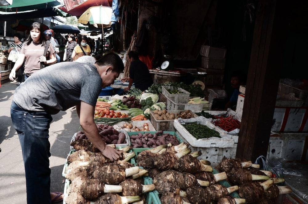 man picking taro fruits