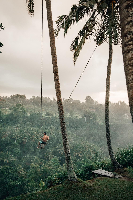 man riding swing near trees at daytime