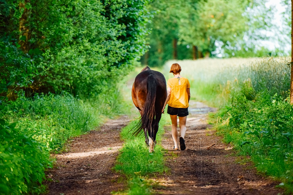 woman walking beside horse