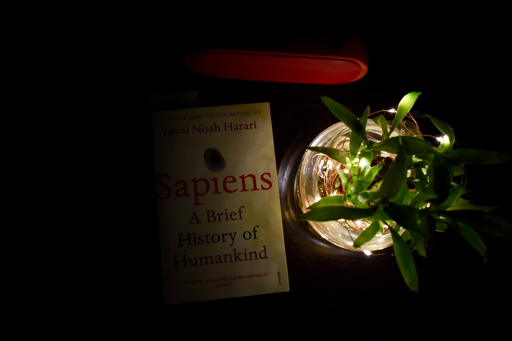 Sapiens history of humankind book
