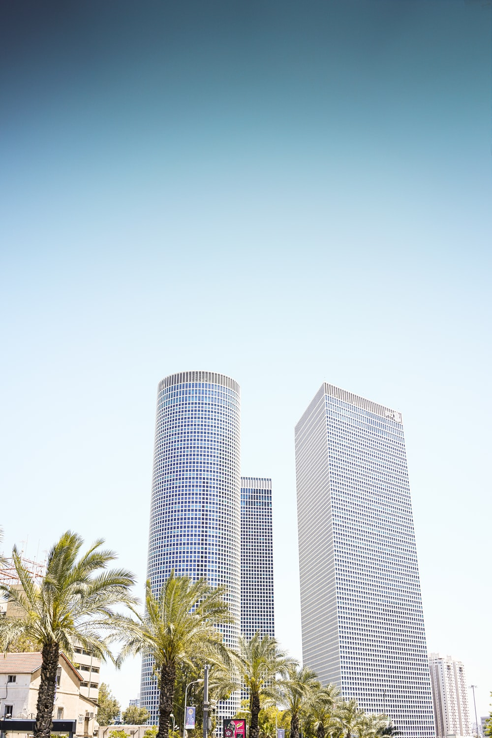 three high-rise buildings near palm trees