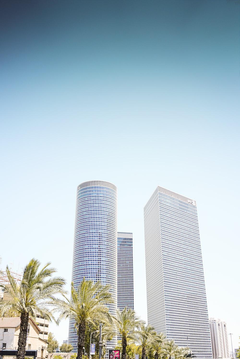 three high-rise buildings near palm trees