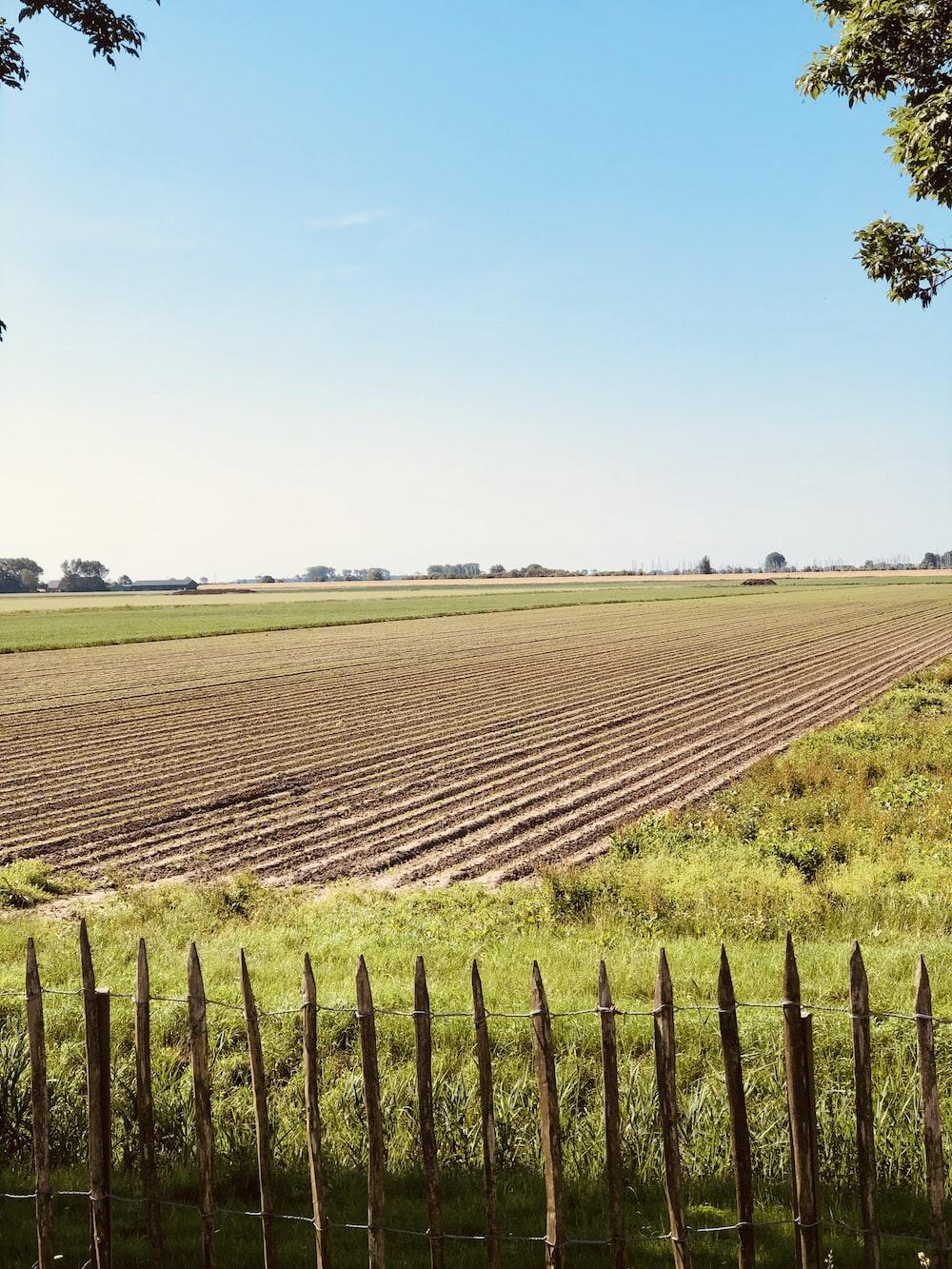 plowed soil between grass field
