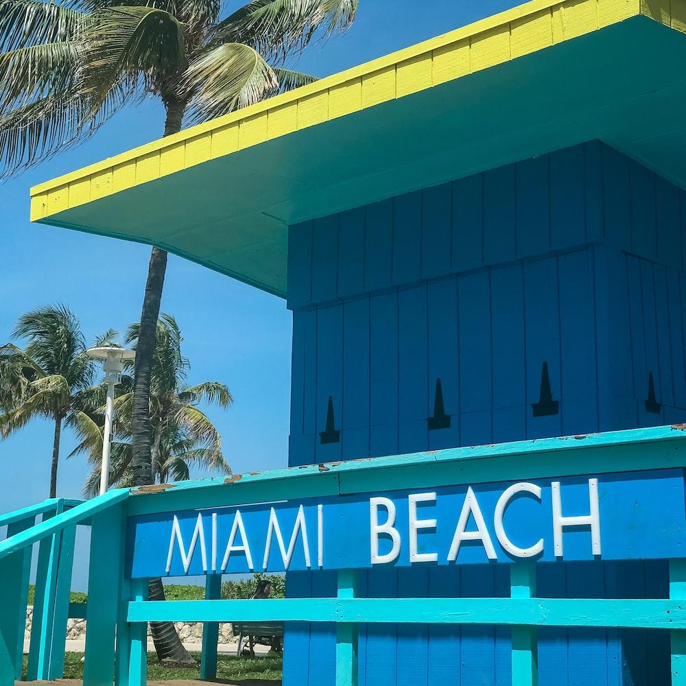 Miami Beach room near coconut tree