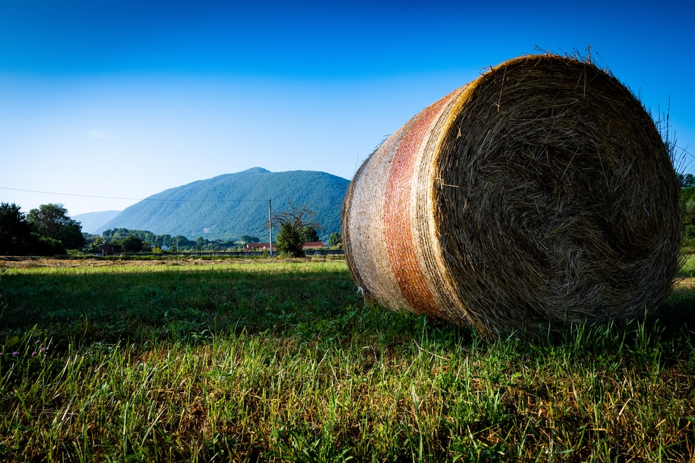 view of hay at the farm