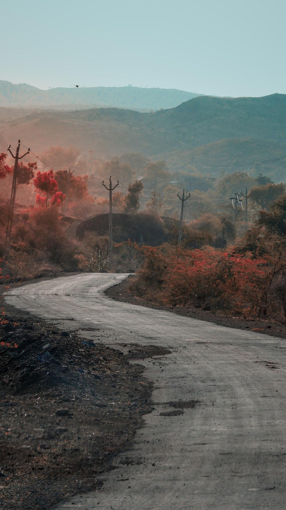 view of dirt road through rural area