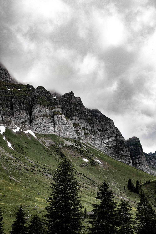 cliff near trees