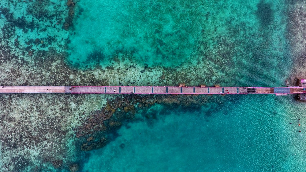 aerial photography of brown bridge over the sea