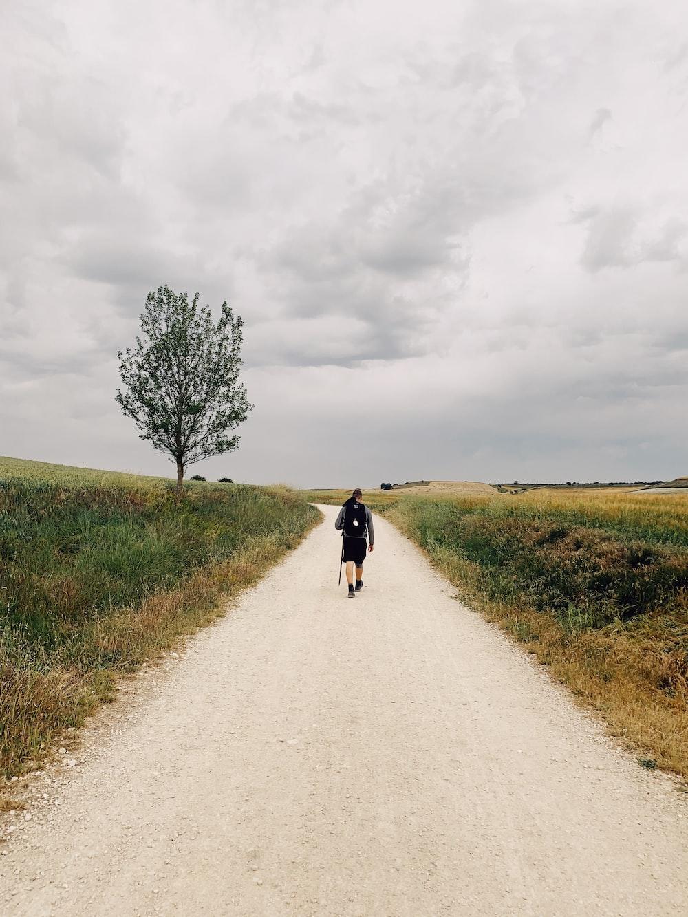 person walking on road near green open field under white skies