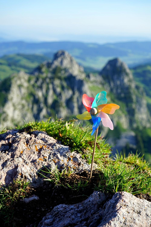 multicolored propeller mountain