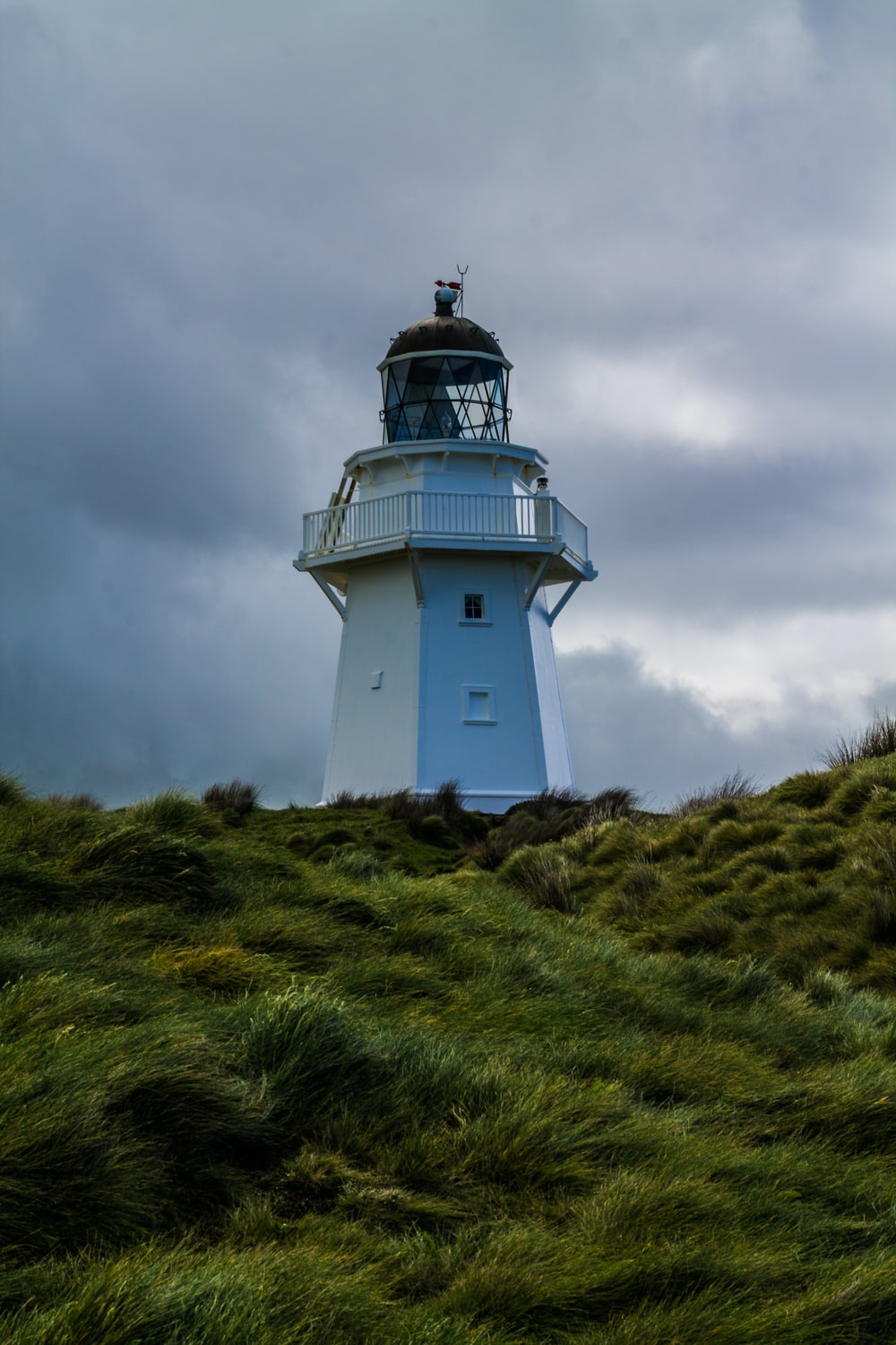 lighthouse surrounded with trees